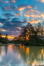 Preview iPhone wallpaper Fritham, Hampshire, England, river, trees, sunset
