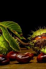 iPhone fondos de pantalla Fruta, castaña, nueces