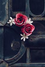 Gate, rose, rusty