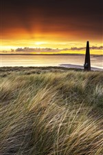 Preview iPhone wallpaper Grass, sea, dusk, sunset