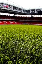 Preview iPhone wallpaper Green grass, football stadium