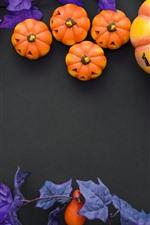 Dia das bruxas, abóbora, bagas, decoração