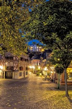 Preview iPhone wallpaper Hesse, Germany, trees, street, bench, houses, lights, night