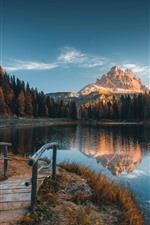 Italy, Alps, trees, lake