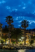 Preview iPhone wallpaper Italy, Santa Margherita Ligure, palm trees, night, houses, lights
