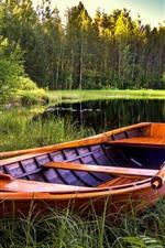 See, Boot, Bäume, Gras