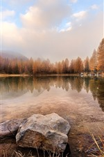 Preview iPhone wallpaper Lake, grass, trees, fog, stones, autumn