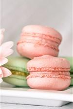 Preview iPhone wallpaper Macaron, pink gerbera
