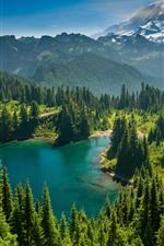 Preview iPhone wallpaper Mount Rainier, Eunice Lake, Washington State, USA, trees, nature