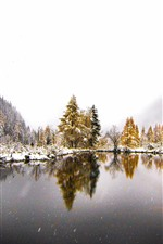 Preview iPhone wallpaper Mountains, trees, lake, snow, winter, fog