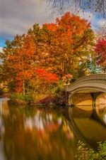 Preview iPhone wallpaper New York, Central Park, bridge, river, trees, autumn