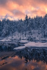 Preview iPhone wallpaper Norway, trees, winter, snow, sunset