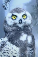 Owl, yellow eyes, pine, snow