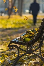 Preview iPhone wallpaper Park, leaves, bench, autumn