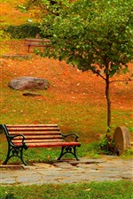 Preview iPhone wallpaper Park, trees, bench, path, autumn