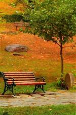 iPhone fondos de pantalla Parque, árboles, banco, camino, otoño