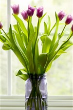 Preview iPhone wallpaper Purple tulips, vase, windowsill