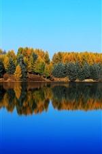 iPhone fondos de pantalla Saihanba, Shenlongtan, árboles, lago, reflejo de agua, otoño