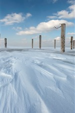 Preview iPhone wallpaper Snow, stumps, winter
