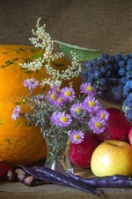 Preview iPhone wallpaper Still life, pumpkin, peppers, asters, apples, grapes