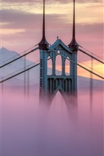 Preview iPhone wallpaper USA, Portland, bridge, mist, morning