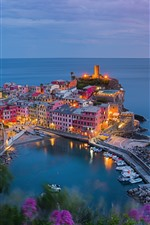 Vernazza, Italy, city, pier, houses, lights, top view
