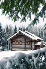Preview iPhone wallpaper Winter, snow, pine trees, wood house
