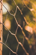 Wire fence, glare, hazy