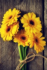 Preview iPhone wallpaper Yellow flowers, gerbera, wood board