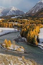 iPhone fondos de pantalla Árboles amarillos, río, nieve, invierno