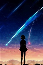 Preview iPhone wallpaper Your Name, meteor, girl, silhouette