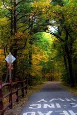 Autumn, road, trees, fence