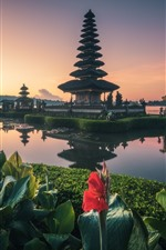 Preview iPhone wallpaper Bali, temple, lake, flowers, Indonesia