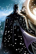 Batman e Catwoman, imagens de arte