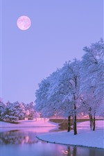 Preview iPhone wallpaper Beautiful winter, snow, trees, river, moon, dusk