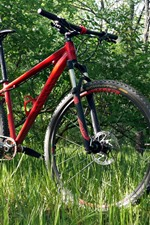 Preview iPhone wallpaper Bike, grass, forest