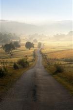 Bosnia and Herzegovina, road, morning, fog