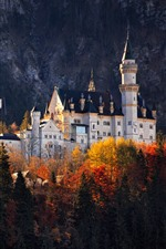Preview iPhone wallpaper Castle, trees, autumn, Germany
