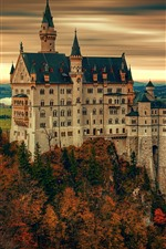 Preview iPhone wallpaper Castle, trees, autumn, village, Germany