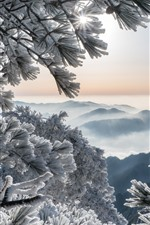 Preview iPhone wallpaper China, Huangshan Mountains, pine, frost, snow, winter