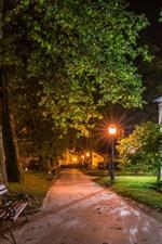 Croácia, Samobor, noite, casas, árvores, caminho, banco, luzes