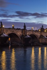Preview iPhone wallpaper Czech Republic, Prague, bridge, river, lights, night, city