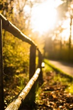 Preview iPhone wallpaper Fence, road, sunshine, hazy
