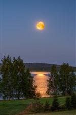 Finlândia, lago, cabana, árvores, lua