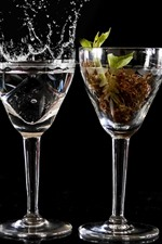 Four glass cups, flame, smoke, water, plant