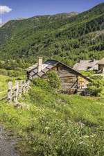France, Alps, houses, trees, mountains