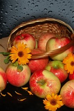 Fresh red apples, basket, water droplets