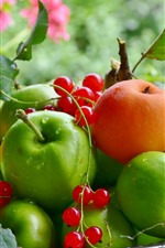 Preview iPhone wallpaper Green apples, apricots, red currants, fruits