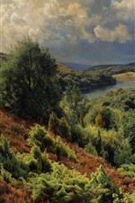 Hills, trees, nature landscape