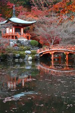 Preview iPhone wallpaper Japan, park, pagoda, bridge, pond, autumn